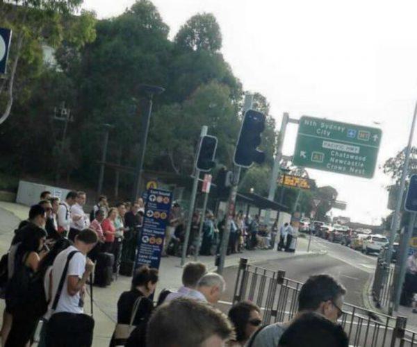 public transport lane cove