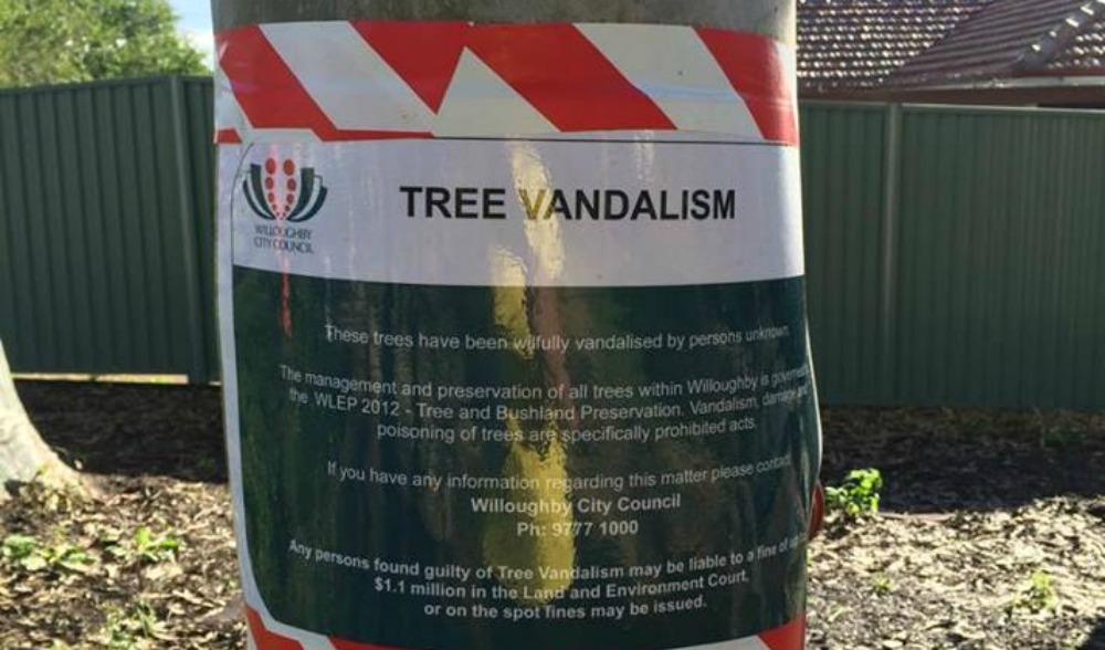 tree vandal
