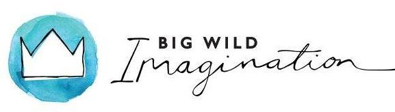 big wild imagination