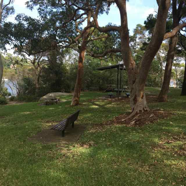top picnic spots Lane Cove