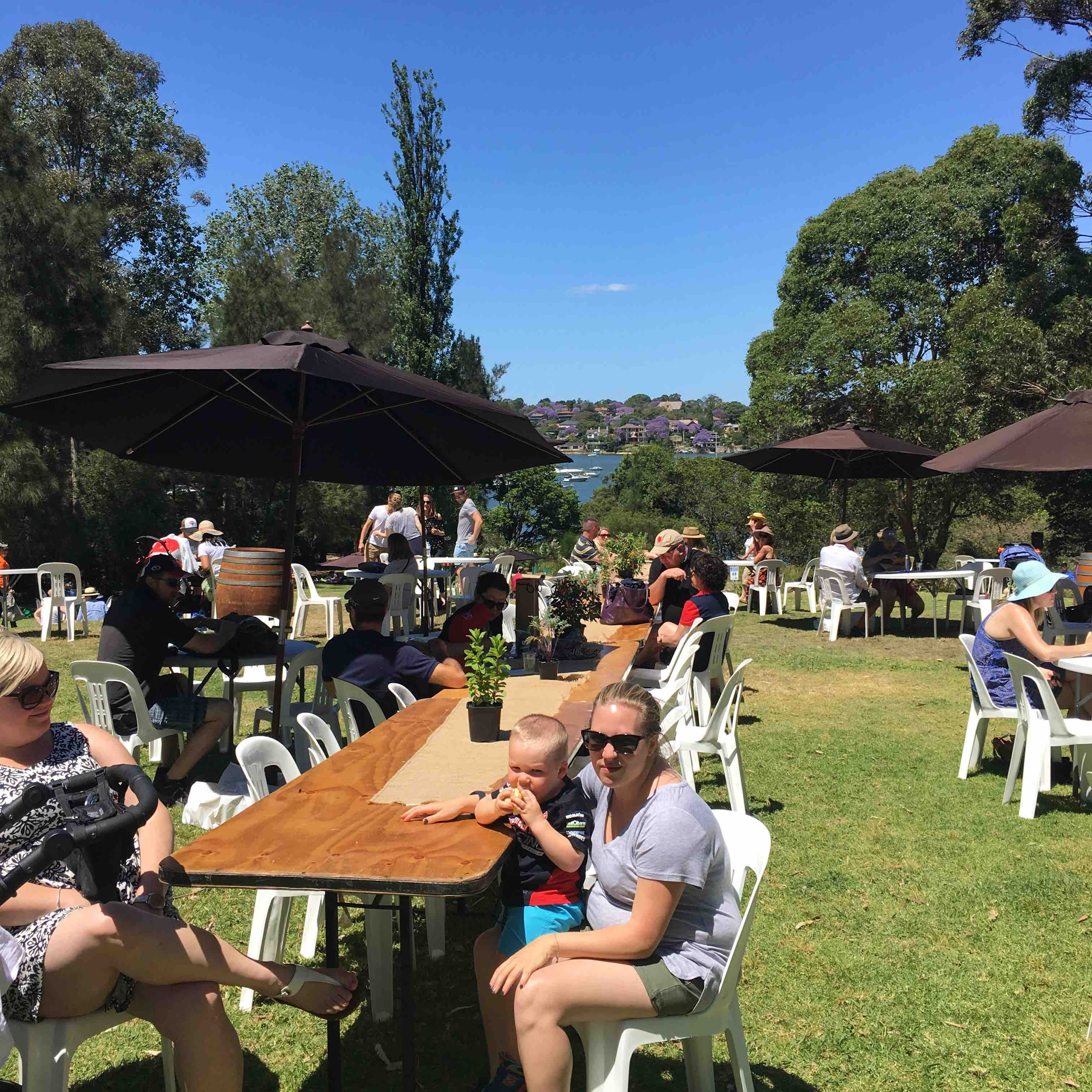 lane cove weekly wrap up