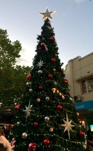 lane cove christmas tree