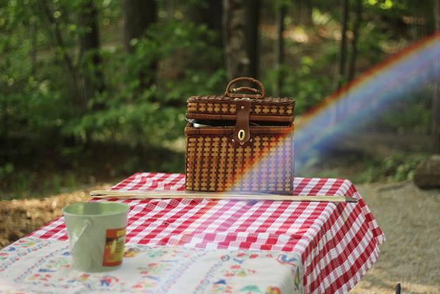 mumz club family picnic