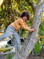 climbing trees amongst the banana plantation