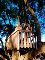The jacaranda tree cubby! One of our tree houses
